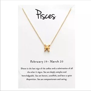 Jewelry - Brand New Pisces Pendant Necklace